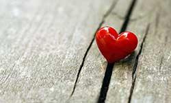 قانون پایداری عشق در زندگی