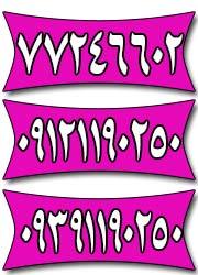 سالن عقد خاطره ( دفتر ازدواج 163 )