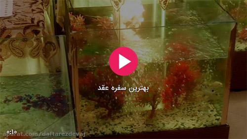 فیلم دفتر ازدواج شرق تهران