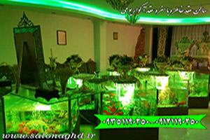 سالن عقد در شرق تهران